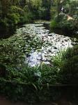 直島もねの庭