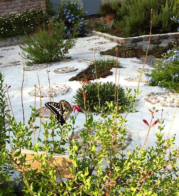 小豆島庭と蝶