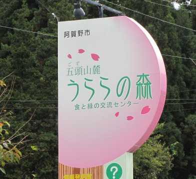 うららの森 1