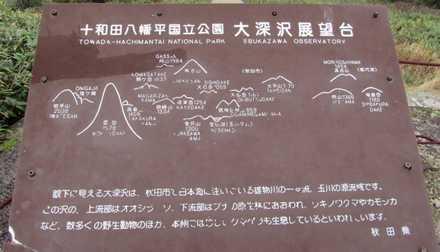 4 八幡平頂上 5 大深沢展望台