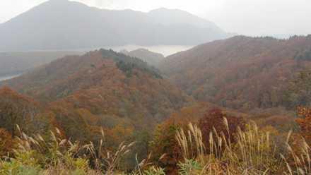 秋元湖 1