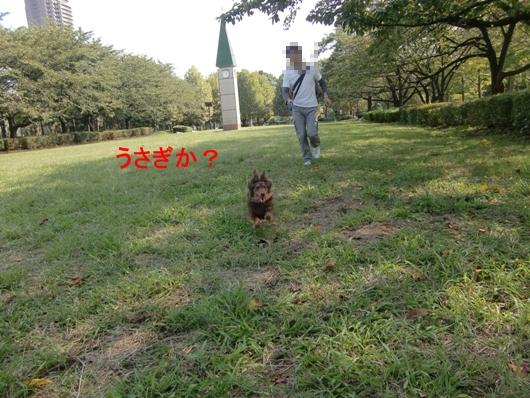 CIMG7469.jpg