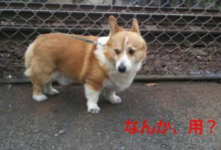 20130610_120819.jpg