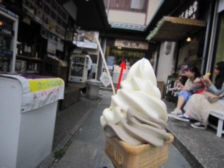 嵐山6月IMG_5375 - コピー