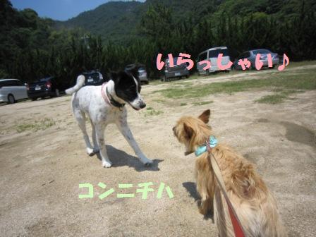 初海IMG_5404 - コピー