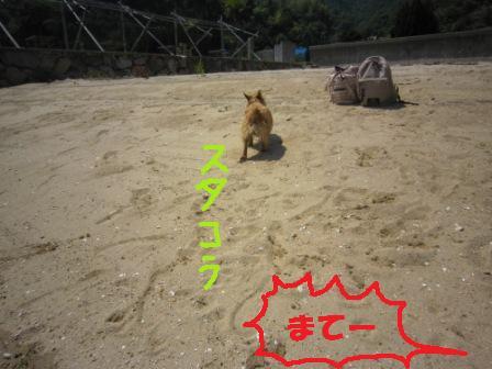 初海IMG_5503 - コピー