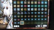 MH4G 真鎧玉999+35