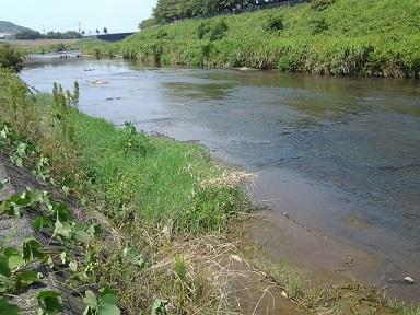 2武庫川上流