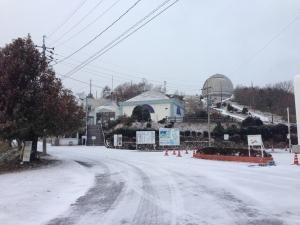 snow20141217