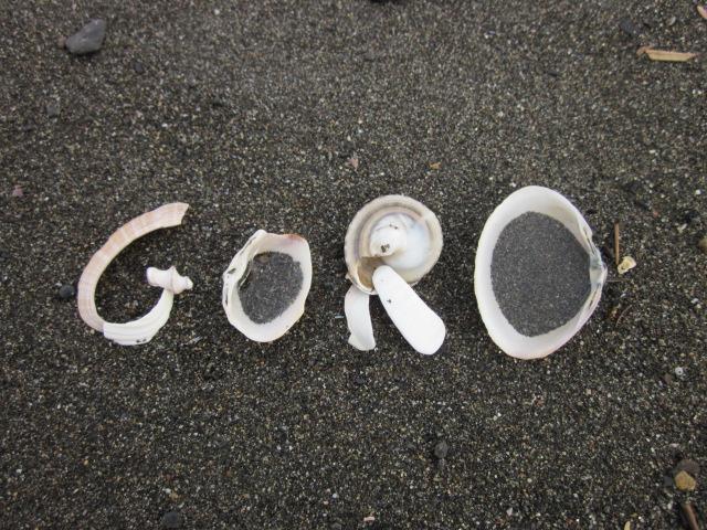 goro_20131120223507f70.jpg