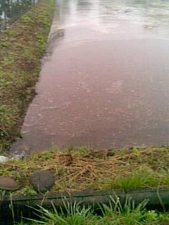 田植え水回し20130615