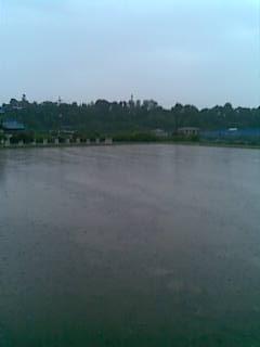 20130615恵みの雨1