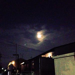 キレイな満月
