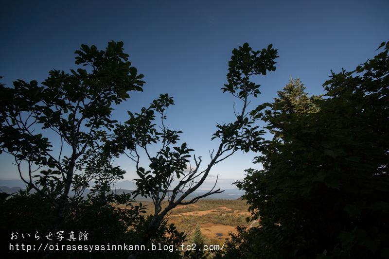 _DSC3364.jpg