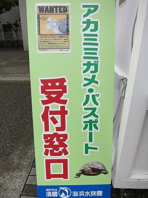 須磨海浜水族園 (3)