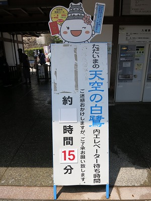 姫路城 天空の白鷺 (21)