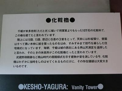 姫路城 天空の白鷺 (3)