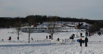 sled1402.jpg
