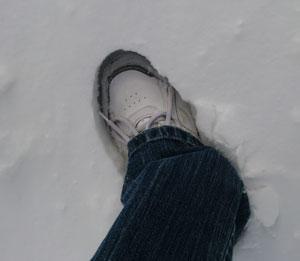 snow01301414.jpg