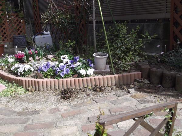 20130401ハナミズキ花壇