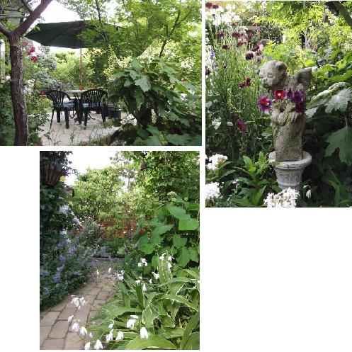 20130525Mさん庭⑮