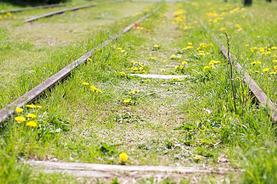 鉄道風景-1