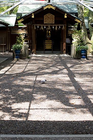 中村から名城-3