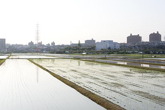 天白川2-11