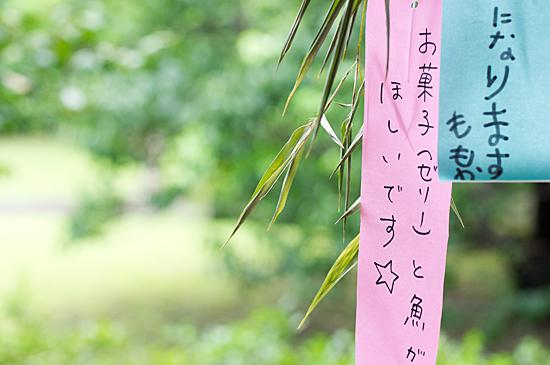 徳川園-3