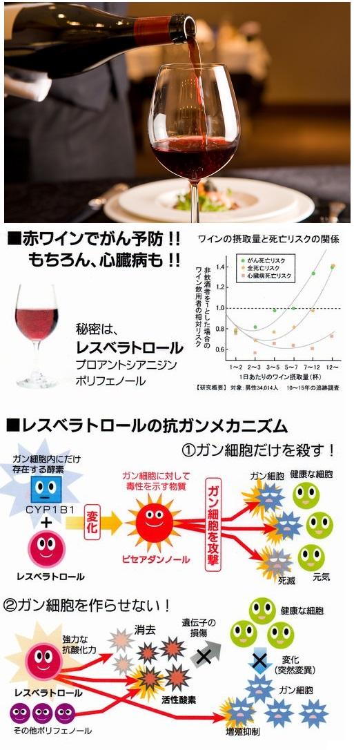 赤ワイン 画