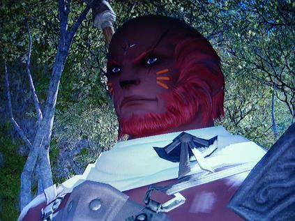 燃える男の赤いルガディン