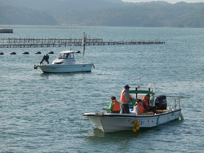 松島釣り人