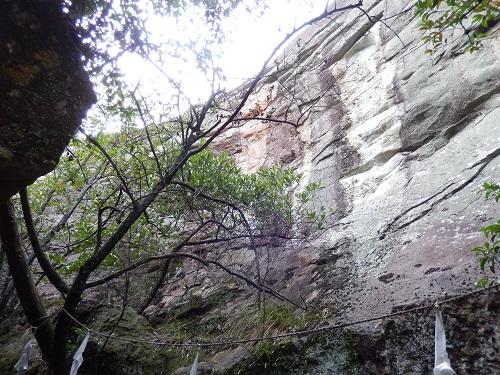 浮石後ろの岩