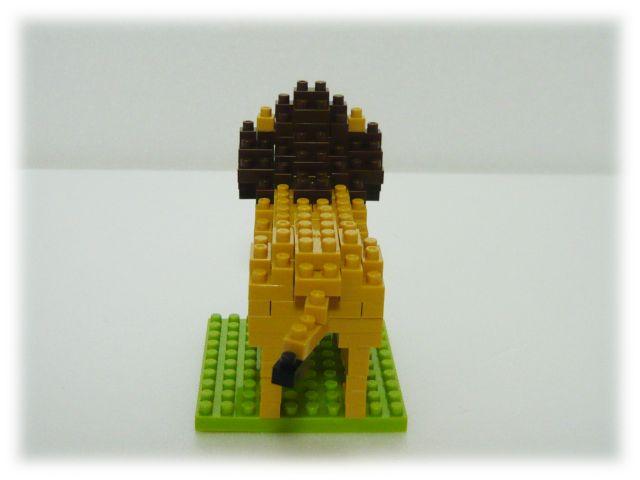 NBC-057 ライオン