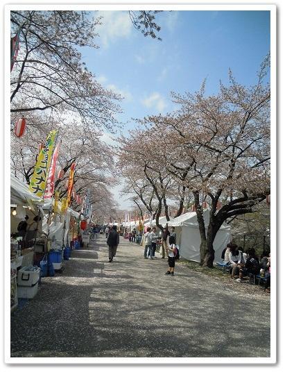 羽村桜祭り