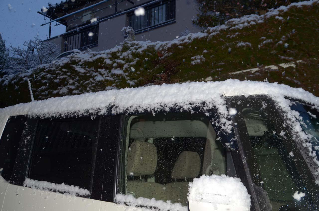 D70_1947雪