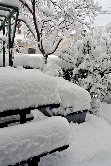 DSC_9680大雪