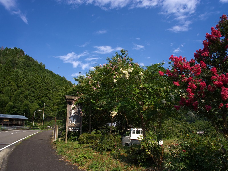 京都美山 自然