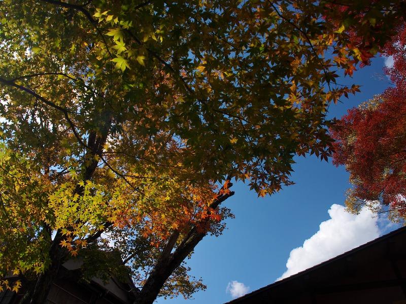 秋の京都大原をぶらり歩き