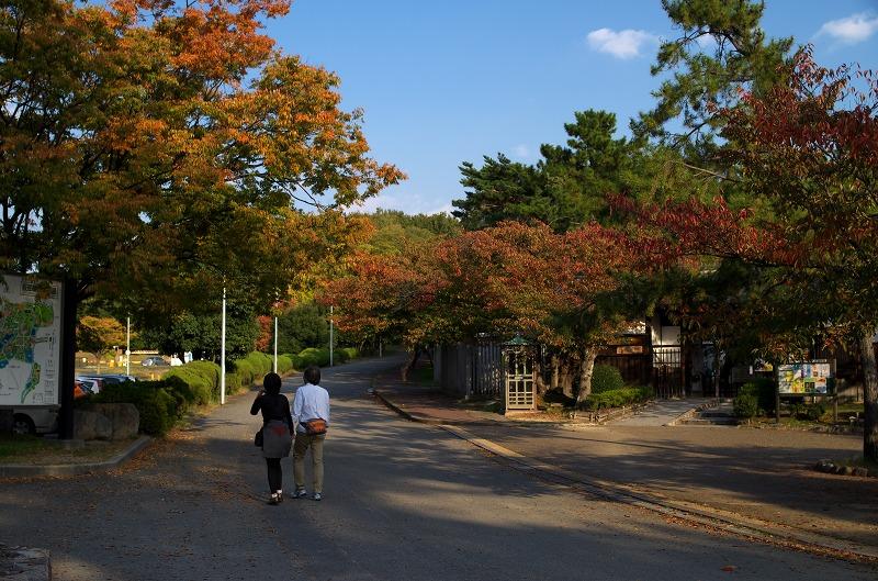 服部緑地公園 秋 風景