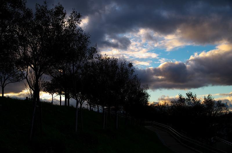 狭山池 夕方