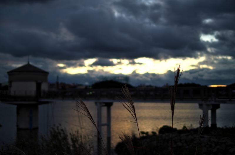 狭山池 夕焼け