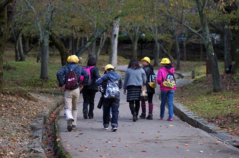 奈良公園 紅葉 遠足