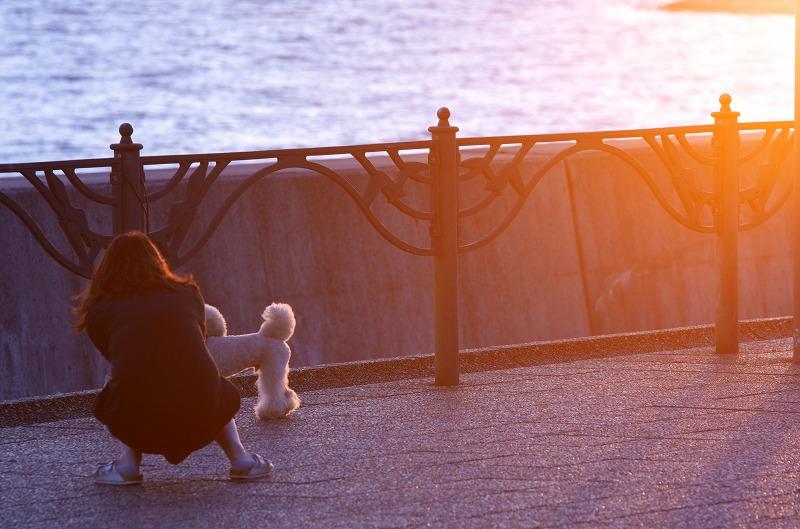 二色の浜公園 夕焼け