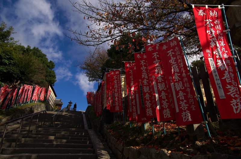 奈良公園 階段