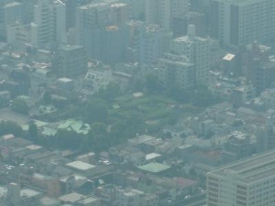東京風景(スカイツリーから)②