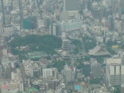 東京風景(スカイツリーから)①