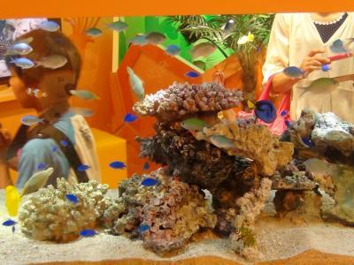 熱帯魚水槽②