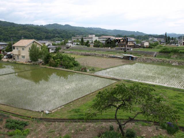 kubotonoyasiki1 (7)