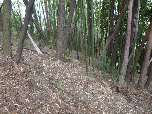 itousakagami5 (8)
